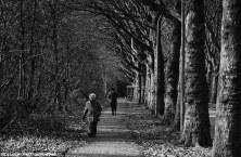PEOPLE WALKING 61