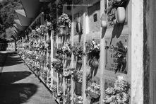 46-staetdischer-friedhof-bozen