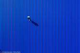 blau-08