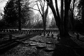 72-suedfriedhof-koeln