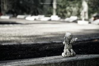 76-nordfriedhof-koeln