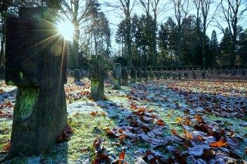 82-suedfriedhof-koeln