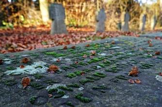 85-suedfriedhof-koeln