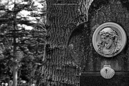 104-nordfriedhof-koeln