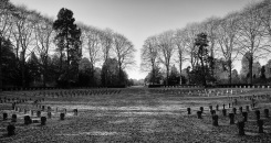 91-suedfriedhof-koeln